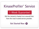KinaseProfiler™ Services