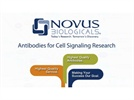 Antibodies for Cell Signaling Research from Novus Biologicals