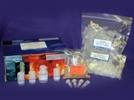 UltraClean® 6 Minute Mini Plasmid Prep Kit from MoBio Laboratories