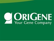 Expression Hosts for Recombinant Proteins and the Purified Protein Collection from OriGene