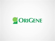 Over-Expression Protein Lysates from OriGene