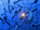 Molecular Cytogenetics Using Next-Gen Sequencing