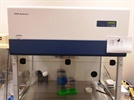 Get rid of PCR contamination