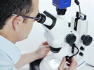 ZEISS Stemi 508 Stereomicroscope Designed for Heavy Workloads