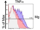 Useful, reliable intracellular TNFa Antibody