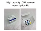 Conversion of RNA to cDNA in easy steps