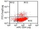 Anti-Human FOXP3 Antibody for FACS Analysis