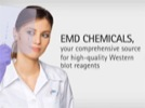 Watch Video: RapidStep™ ECL Reagent-  A Fast, Versatile, Convenient, and Sensitive Substrate for Western Blotting Streaming Video