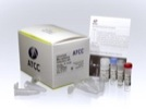 ATCC® Universal Mycoplasma Detection Kit