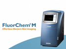 Watch Video: FluorChem® M - Advancing Effortless Multiplex Western Blot Imaging Streaming Video