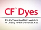 Watch Video: CF Dyes: The Next Generation Fluorescent Dyes Streaming Video