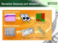 Audio Showcase: Cancer Gene Biomarker Validation via Unique TissueScan qPCR Arrays Audio Showcase