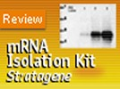 Poly(A) Quik mRNA Isolation Kit