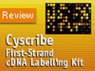 GE Healthcare's Cyscribe First-Strand cDNA Labelling Kit