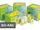 ReadyPrep™ 2-D Cleanup Kit From Bio-Rad