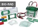 Mini-PROTEAN® Tetra Electrophoresis System From Bio-Rad
