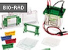 Mini-PROTEAN® Electrophoresis Cell From Bio-Rad