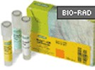 Bio-Rad's iScript cDNA Synthesis Kit