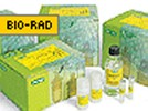 Bio-Rad's ReadyPrep 2-D Cleanup Kit