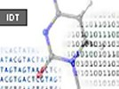 Custom Oligonucleotides From Integrated DNA Technologies