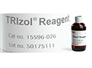 TRIzol® Reagent From Invitrogen