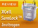 Invitrogen's XCell SureLock Mini-Cell