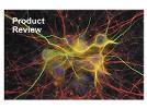 Alexa® Dyes From Invitrogen (Molecular Probes)