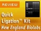 New England BioLabs' Quick Ligation Kit