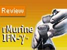 PeproTech's Recombinant Murine IFN-γ