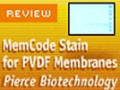 Pierce Biotechnology's MemCode Stain For PVDF Membranes