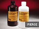 SuperSignal® West Pico Chemiluminescent Substrate from Pierce