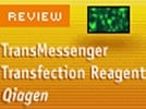 Qiagen's TransMessenger Transfection Reagent