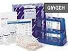 Plasmid Maxi Kit From Qiagen