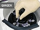 MinElute Gel Extraction Kit From Qiagen