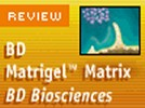 BD Matrigel™ Matrix Growth Factor Reduced (GFR) from BD Biosciences