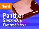Owl Separation Systems Panther(TM) Semidry Electroblotter