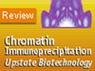 Upstate Biotechnology's Chromatin Immunoprecipitation (ChIP) Assay Kit