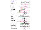 RampUP RNA Amplification Kit From Genisphere