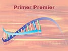 Primer Premier from Premier Biosoft International