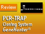 PCR-TRAP Cloning System from GenHunter