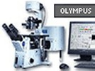 FV1000-IX81 Confocal Microscope From Olympus