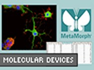 MetaMorph® From Molecular Devices (now part of MDS Analytical Technologies)