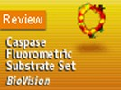 BioVision's Caspase Fluorometric Substrate Set