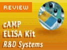R&D Systems' cAMP ELISA Kit