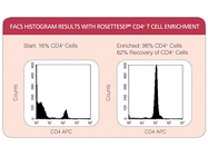 RosetteSep® Human CD4+ T Cell Enrichment Cocktail From StemCell Technologies
