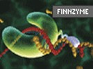 Finnzyme's Phusion DNA Polymerase