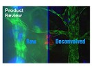 AutoDeblur Software From Media Cibernetics Inc. For Advanced Image Deconvolution