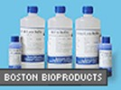 Luminol HRP Western Blot Substrate From Boston BioProducts