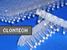 Clontech's In-Fusion PCR Cloning Kit