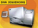 Equipment For Automated DNA Sequencing